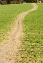 path_crop